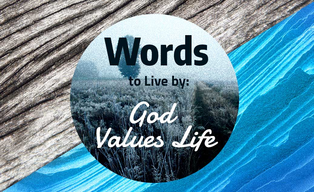 Words to Live by: God Values Life