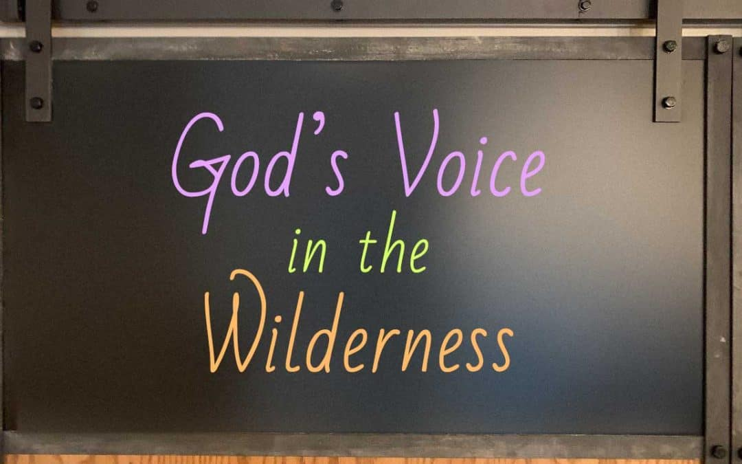 God's Voice in the Wilderness